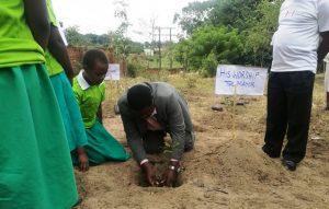 Deputy Mayor plants a tree