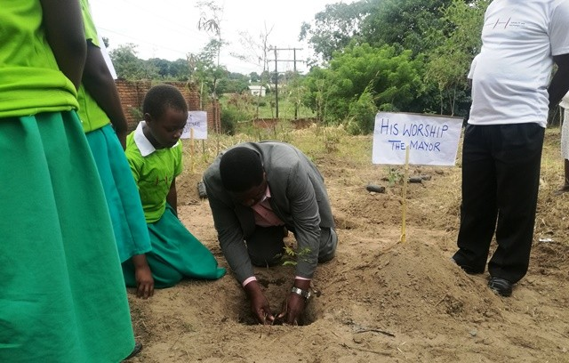 Deputy Mayor plants a tree